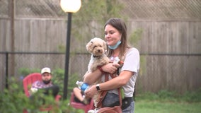 Grab a pint with your pooch at Seminole Heights dog parkand bar