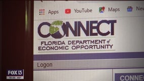 Florida unemployment system failure continues one year into pandemic