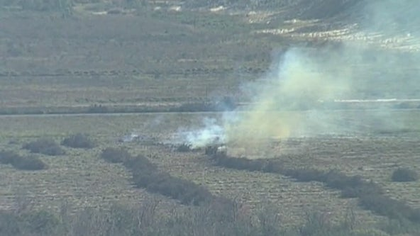 Why prescribed burns are important in Florida