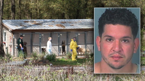 Brooksville kennel operator charged with animal cruelty after investigators find 11 dead puppies