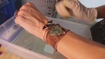 Made in Tampa Bay: Rogue's Relics copper jewelry with a Florida twist