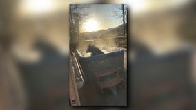 'It's just having a blast': Black bear soaks in hot tub in the Great Smoky Mountains