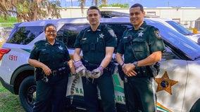 Deputies expel small alligator from Hardee elementary school