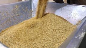 Biden signs law designating sesame as major food allergen, requires labeling on packaged foods