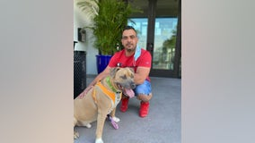 Cross-country team's efforts help deaf dog find new home