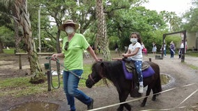 Children reap benefits of interacting with rescued animals at Tampa farm