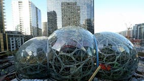 Amazon pushes back return-to-office to January 2022