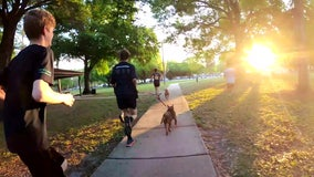 Cross-country team puts shelter dogs on track for brighter future