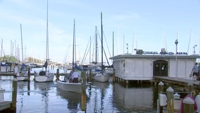 Boaters doubt mayor's claim that privatization would be best for St. Petersburg's marina