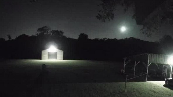 Fireball lights up night sky across Florida