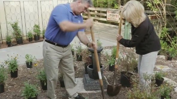 Program aims to teach water-friendly gardening in St. Pete