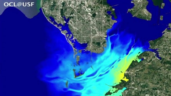 USF's red tide research helps predict Piney Point wastewater flow
