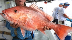 Fishing Report: Memorial Day weekend