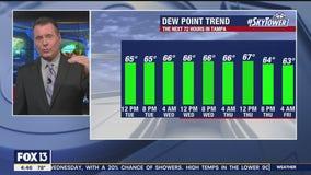 Tuesday morning forecast