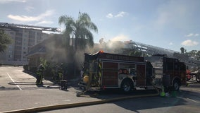 Fire guts Winter Haven restaurant; cooking oil accident blamed