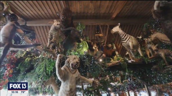 Popular Florida restaurant combines exotic food, taxidermy