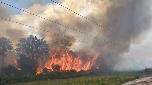 Balm Riverview brush fire threatens power lines, two structures in Lithia