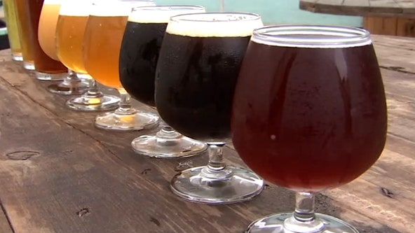 Economist: Florida's craft beer industry is faring better than expected, so far