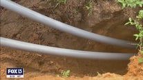 Costs and benefits of underground power lines in Florida