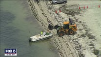 Cleaning up effects of red tide