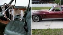 Great Rides: 1961 Lincoln Continental and 1965 Corvette Stingray