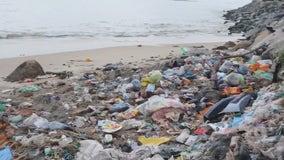 Volunteers keeping Gulf Coast beautiful on World Oceans Day