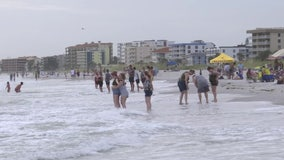 People pack beaches Father's Day weekend despite patchy algal blooms