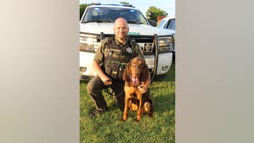 K9 bloodhound finds endangered 6-year-old missing a month