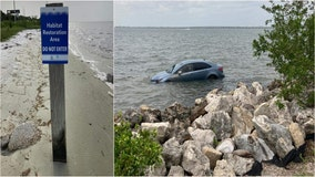 High tide nearly sinks illegally parked car along Courtney Campbell Causeway