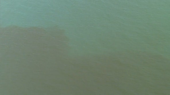 Red tide detected near Pasco County