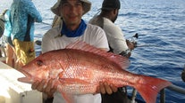 Red snapper season is coming to a close