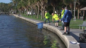 Coffee Pot Park shows signs of improvement after crews, volunteers spend days cleaning up dead fish