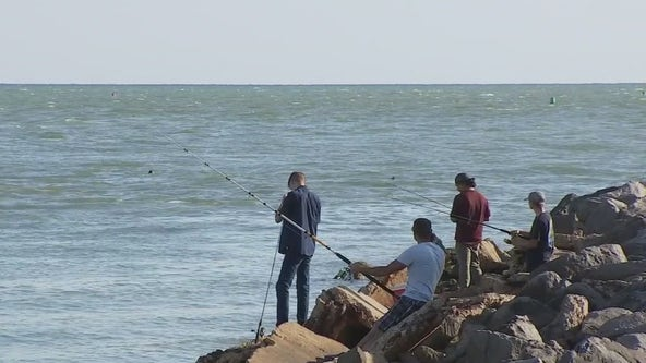 Red tide, pandemic deliver one-two punch to fishing businesses