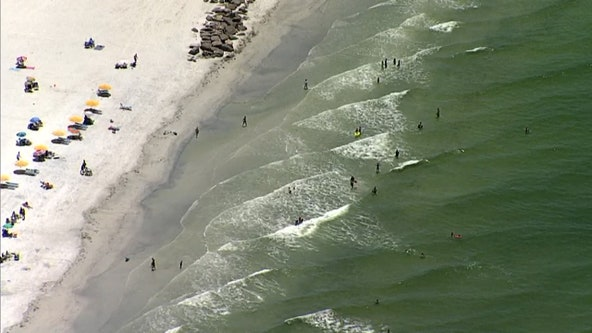 Red tide predicted to worsen on Pinellas County beaches this weekend