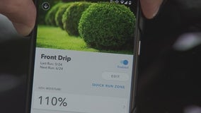 Smart sprinklers keep lawns green without wasting water