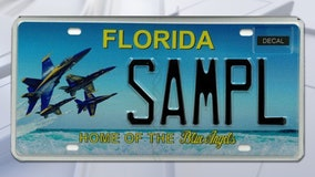 Blue Angels license plate cleared for takeoff