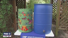 Learn to harvest rainfall, conserve water to reduce runoff pollution