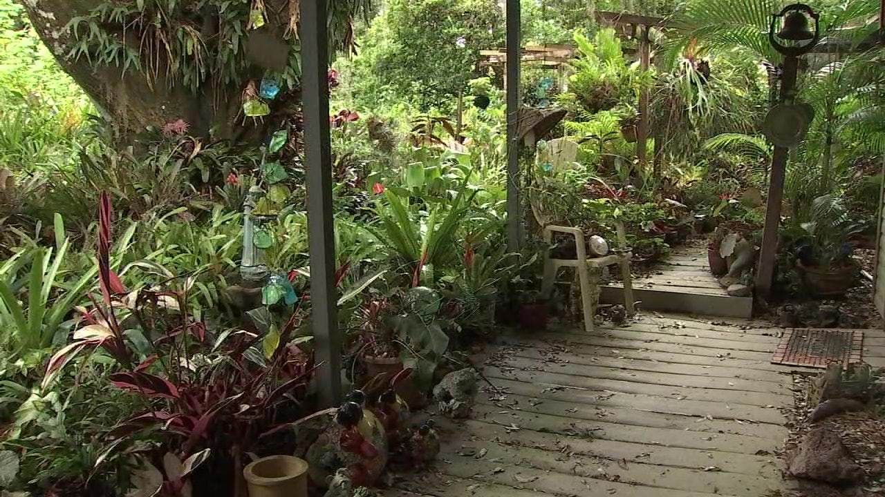 Family hopes to save life's work of Hillsborough County master gardener