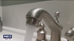Oxygen shortage could have long-term impacts on Tampa water system
