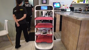 South Tampa restaurant's robotic waiter may be wave of the future