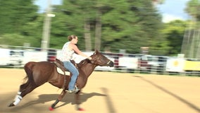 Pasco County riding association creates friendly atmosphere of competition for horse lovers