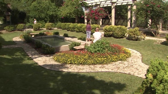 Art and nature collide as visitors 'see the invisible' at Marie Selby Botanical Gardens