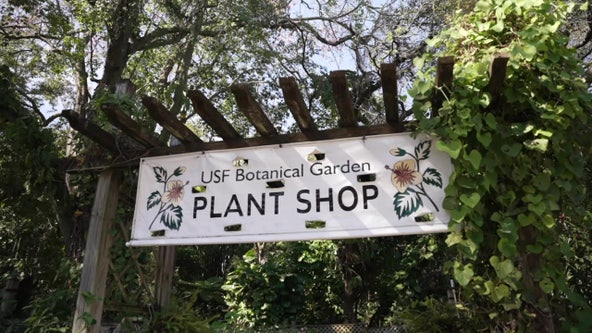 USF Botanical Gardens considered a 'hidden gem in the middle of campus'