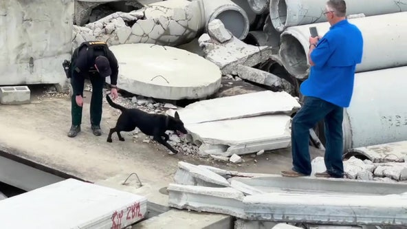 Pasco Sheriff's Office K-9s skilled in finding everything from bombs to bodies