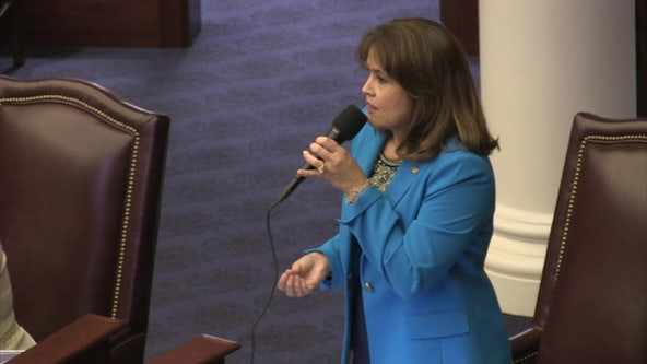 Annette Taddeo tosses hat into crowded race for Florida's governor