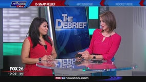 The Debrief - D-SNAP application lines