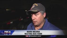 Bobcat terrorizes Pearland farm