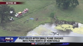 Pilot dies when plane crashes into pond