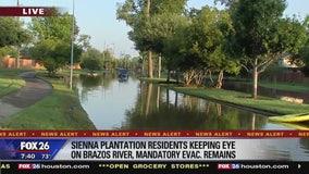 Update Sienna plantation