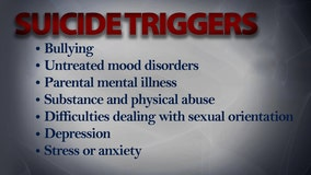Suicide prevention: Triggering factors for teens